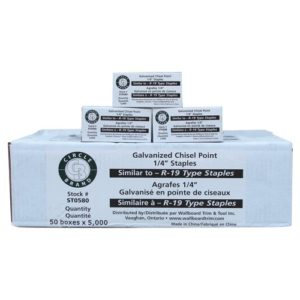 """R19  Wire Staples 1/4""""     5000/BX"""